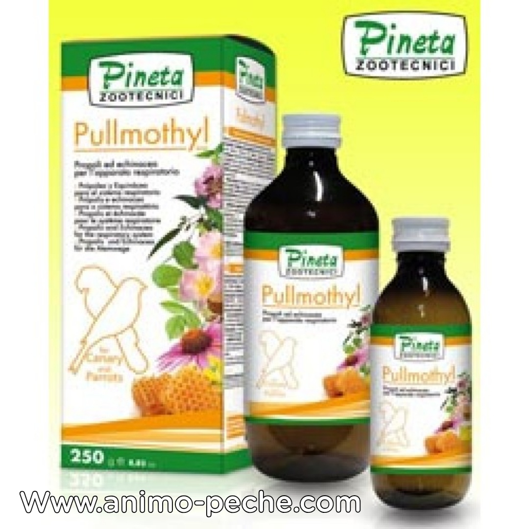 PULLMOTHYL PINETA 125ML