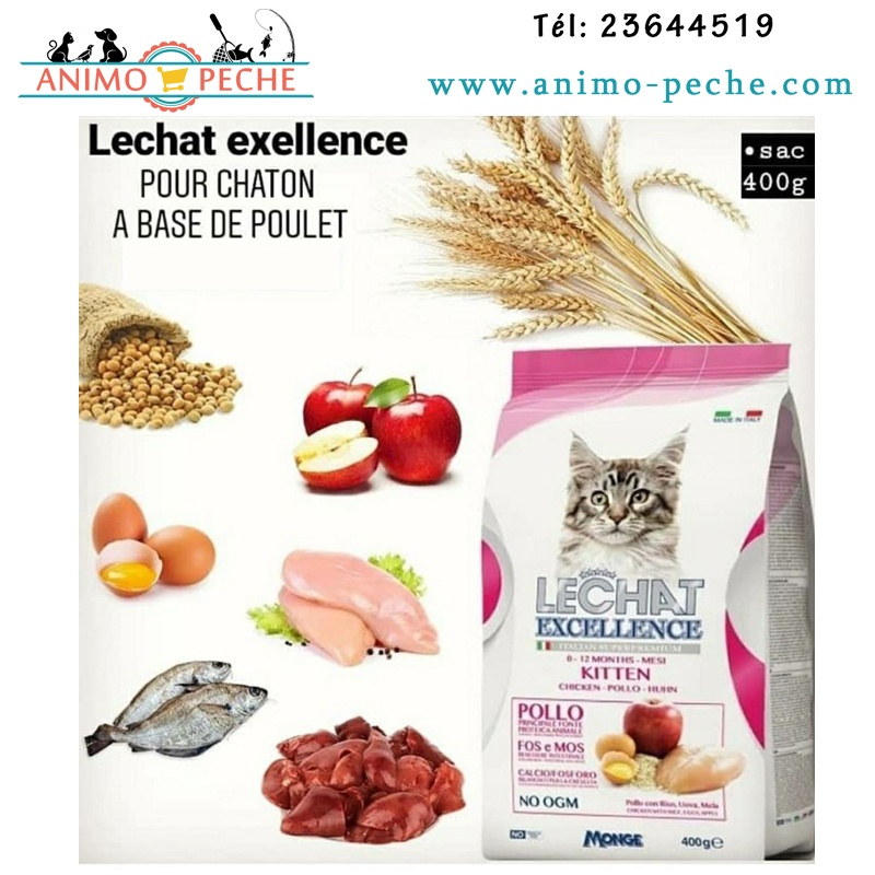 Le Chat Excellence Kitten
